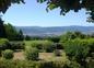 La vue sur Mazamet et la Montagne Noire