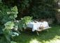 jardin lintever